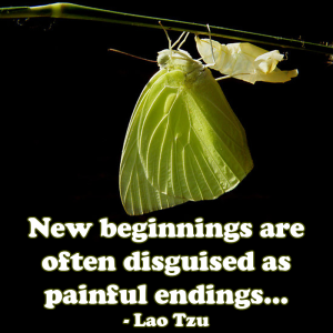 new-beginnings-or-painful-endings